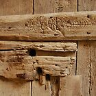 Old Wooden Door with Padlock by jojobob