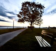 Bench and Street Light Escanaba Michigan Sunrise by pictureguy