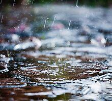 meet the rain by Victor Bezrukov