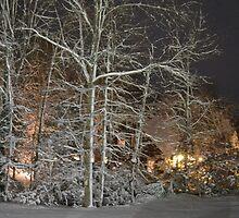 A Snowy Glow.... by Justine Kenney