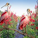 Roseate Spoonbills in Bottlebrush by Bonnie T.  Barry