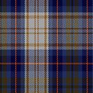 01220 Navy Daze Fashion Tartan Fabric Print Iphone Case by Detnecs2013