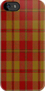 01227 Orange Spekkoek Fashion Tartan Fabric Print Iphone Case by Detnecs2013