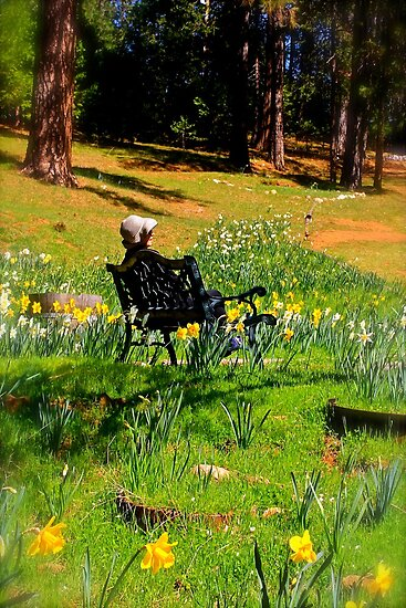 Spring Contemplation by Barbara  Brown
