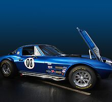 Grand Sport Corvette by WildBillPho