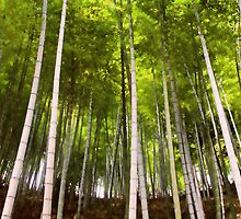 Bamboo Forest by yewkwang