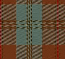 01228 Spicey Orange Fashion Tartan Fabric Print Iphone Case by Detnecs2013