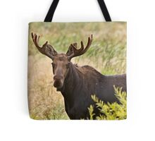 Bull Moose in Saskatchewan Prairie wheat bush close up Tote Bag