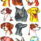 Brush Breeds Compilation Batch 2 by Alexa H.J.