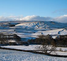 Thorpe view, Yorkshire Dales by Rebecca Mason