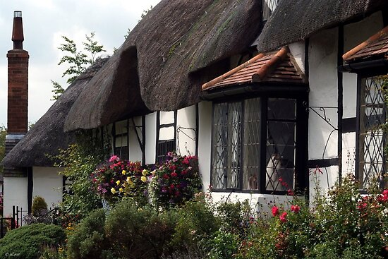 Stratford Upon Avon Thatch by Loree McComb