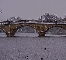 Clumber Park Bridge In The Snow  by skid