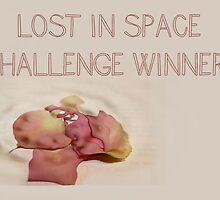 Banner - LIS - Challenge Winner by aprilann