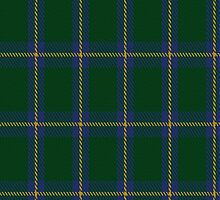 01254 Keeper's Helm Fashion Tartan Fabric Print Iphone Case by Detnecs2013