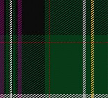 01256 Penny Candy Fashion Tartan Fabric Print Iphone Case by Detnecs2013