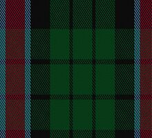 01257 Pinafore Pixie Fashion Tartan Fabric Print Iphone Case by Detnecs2013