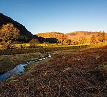 Borrowdale (Bathed in Sunlight) by David Lewins