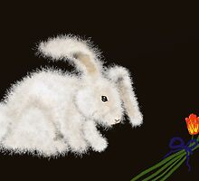 Angora Rabbit by SophiaDeLuna