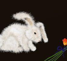 Angora Rabbit by SophiaDeLuna