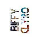 Album Logos: Biffy Clyro by smallinfinities