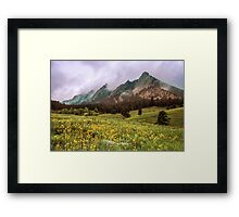 It's Spring - Soon Flowers Will Sing Framed Print