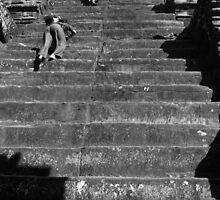 Ancient Escalator by Andrew Permezel