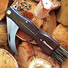 Mushroom knife by Alex Howen