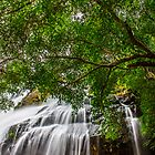Bharachukki waterfalls by Joseph D'Mello
