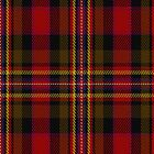 01306 Denver Carlisle Fashion Tartan Fabric Print Iphone Case by Detnecs2013