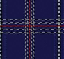 01322 US Law Enforcement Tartan Fabric Print Iphone Case by Detnecs2013