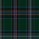 01326 US Special Forces Tartan Fabric Print Iphone Case by Detnecs2013