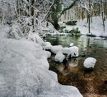 Snow on the River bank by Ian Mitchell