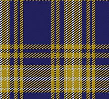 01343 University of North Carolina Greensboro Tartan Fabric Print Iphone Case by Detnecs2013