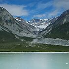 Glacier Bay, Alaska by Matthew Elliott