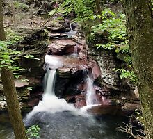 All of Adams Falls From Above by Gene Walls