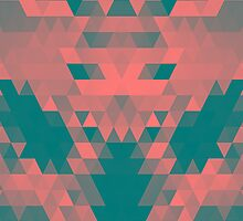 Abstract Triangle Donkey by raincarnival