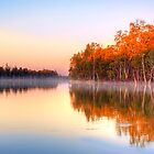 The River Murray - Renmark, South Australia II by Mark Richards