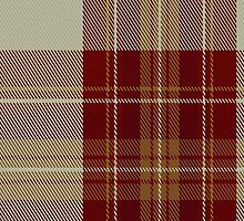 01366 Canna Fashion Tartan Fabric Print Iphone Case by Detnecs2013
