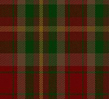 01355 Caledonia Maple Fashion Tartan Fabric Print Iphone Case by Detnecs2013