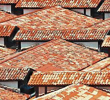 ROOF TOPS VENICE ITALY by Thomas Barker-Detwiler