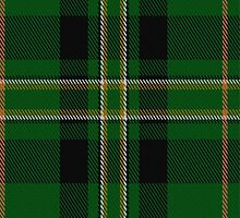 01384 Celtic Pride Fashion Tartan Fabric Print Iphone Case by Detnecs2013