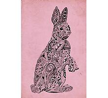 Rabbit_Pink Photographic Print