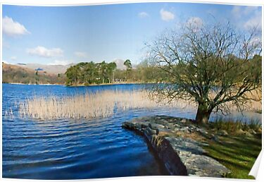 Coniston from Nibthwaite Quay by Tom Gomez