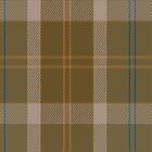 01405 Cladish Fashion Tartan Fabric Print Iphone Case by Detnecs2013