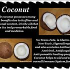 Coconut by DreamCatcher/ Kyrah Barbette L Hale
