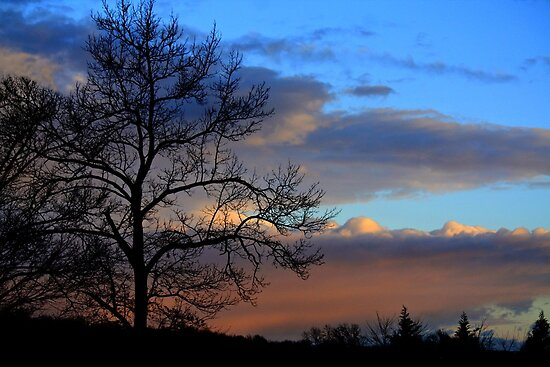 Goodnight Sky by reindeer