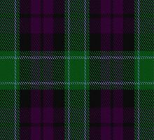 01411 Coburg Fashion Tartan Fabric Print Iphone Case by Detnecs2013