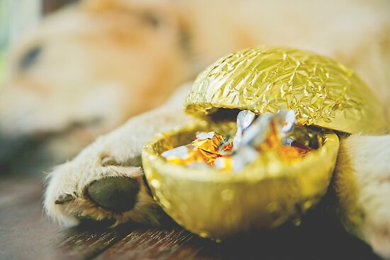 A Golden Easter by kraMPhotografie