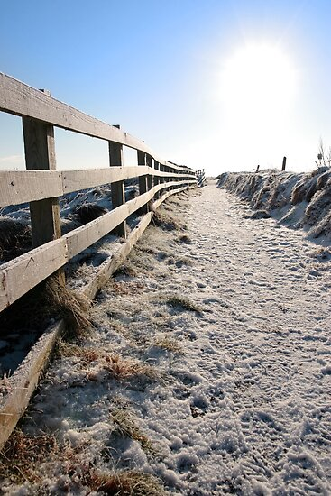 frozen snow covered path on cliff fenced walk by morrbyte