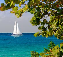 Cozumel, Mexico Sailboat by Mitchell Grosky